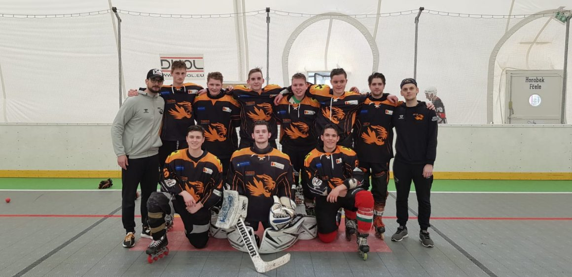 Tigers 3 / U19 sind erneut Vizemeister