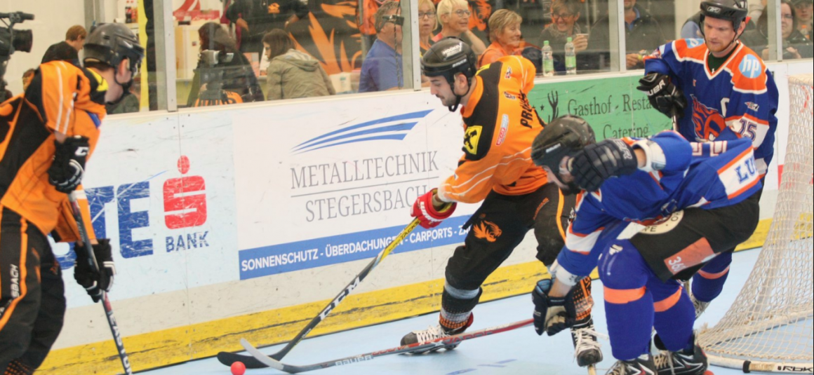 Tigers ohne Punkteverlust ins Playoff