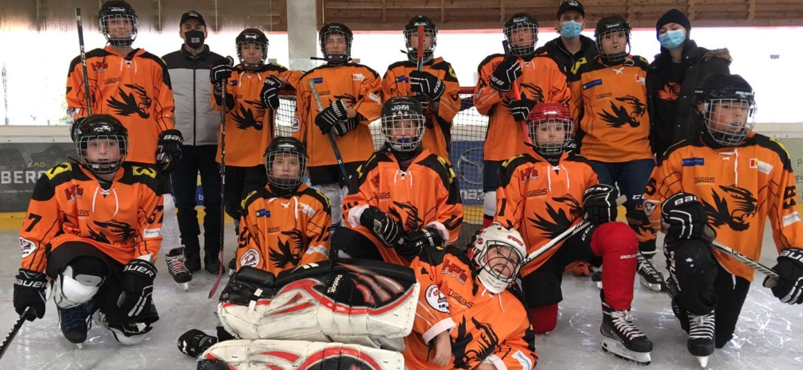Tigers on Ice